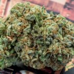 Safely Buy Weed Online From a Legitimate Online Dispensary